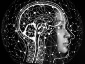 Gehirn / Quelle: Pixabay, lizenezfreie Bilder, open library: geralt; https://pixabay.com/de/illustrations/k%C3%BCnstliche-intelligenz-gehirn-hirn-4389372/